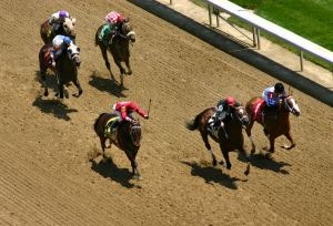 We are crossing our fingers that every horse in today's big races at Churchill Downs crosses the finish line safely.