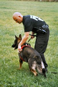 Law enforcement officers in Illinois will now be required to undergo canine behavior training.