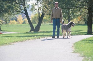 All dogs require daily exercise and interaction with their owners.